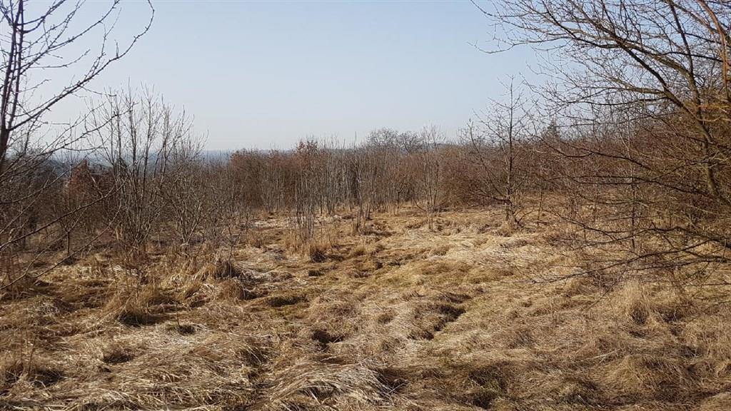 FOTO - Prodej stavebních pozemků o rozloze 17 239 m2 v obci Chotoviny určeného pro výstavbu rodinných domků.