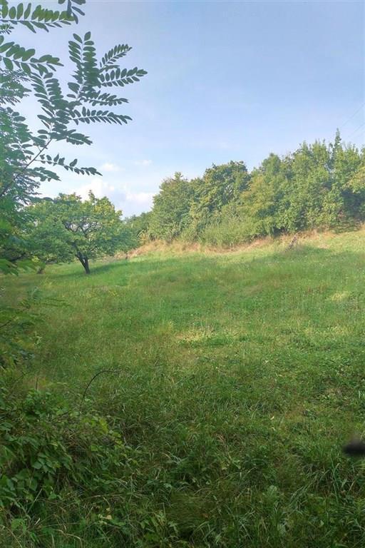 FOTO - Nabízím k prodeji pozemek určený pro výstavbu RD o velikosti 1791 m2 v Mělníku.